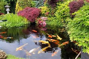 Landscaping, With, Water, Features