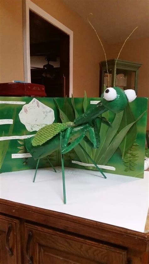brodies  praying mantis model insect crafts