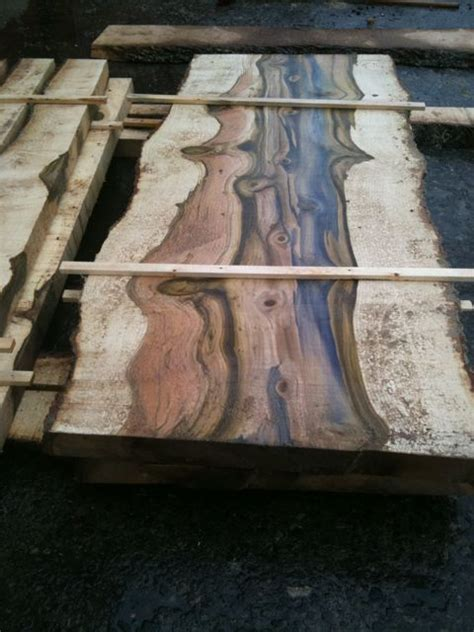 tulip yellow poplar color fade salvaged wood