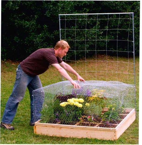 square foot gardening square foot gardening