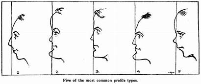Drawing Profiles Facial Human Personality Traits Features
