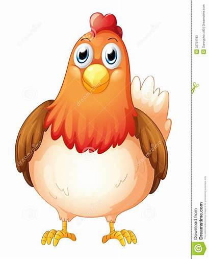 Gallina Hen Fat Poule Grande Henne Clipart
