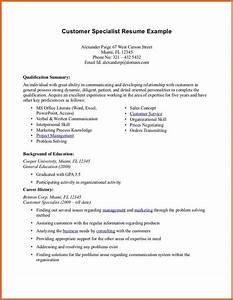 good resume summary cv examples word With good summary for resume