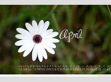 April 2015 wallpaper with calendar free download
