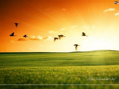 Independence Happy Wallpapers Indian India Independent Patriotic