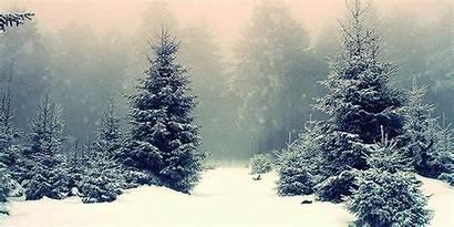 Snow Winter Fall