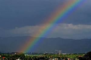 Who Loves Rainbows