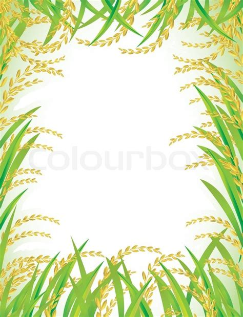 illustration cuisine frame and background of white rice vector colourbox
