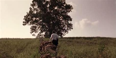 famous  year  oak tree  shawshank