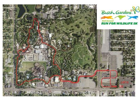 Run For Wildife 5k 2014 At Busch Gardens Tampa