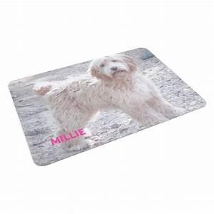Tapis Pour Chat : tapis pour animal domestique tapis pour chien et chat ~ Teatrodelosmanantiales.com Idées de Décoration