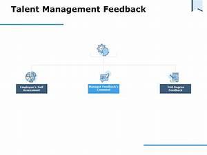 Talent Management Feedback Assessment Ppt Powerpoint