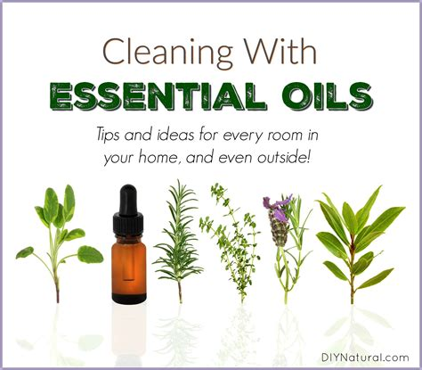 Essential Oils For Cleaning Bathroom by Cleaning With Essential Oils 10 Ways To Use Them Effectively