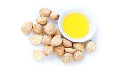 Minyak Kemiri Vycaris enam manfaat minyak kemiri bagi kesehatan yang perlu anda tahu