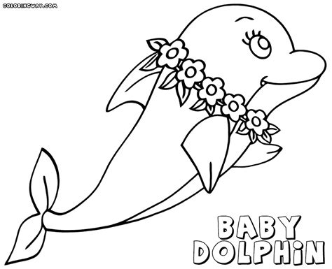 dolphin coloring pages baby dolphin coloring pages coloring pages to