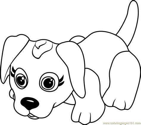 danish pointer coloring page  pet parade coloring