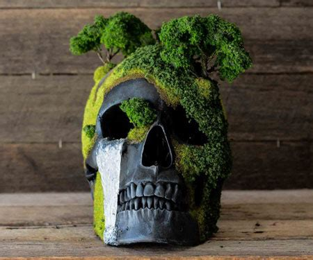Bonsai Skulls Awesome Stuff