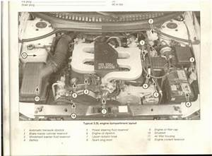 Dodge Intrepid Vacuum Diagram