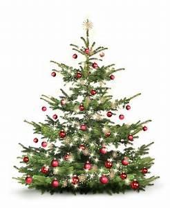 Weihnachtsbaum Mit Rosa Kugeln : weihnachtsbaum christbaum ~ Orissabook.com Haus und Dekorationen