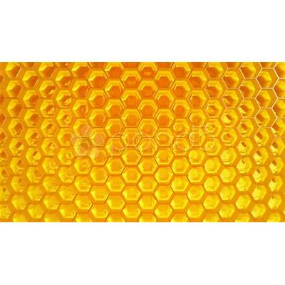 Honeycomb. Honey. Healthy Natural organic nutritious food