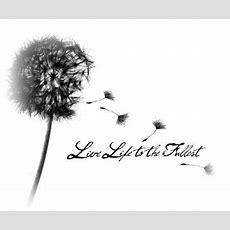 25+ Best Ideas About Dandelion Tattoo Quote On Pinterest  Watercolor Dandelion Tattoo