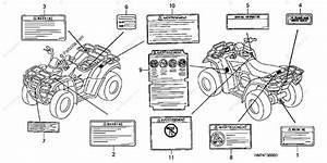 Honda Atv 2005 Oem Parts Diagram For Labels