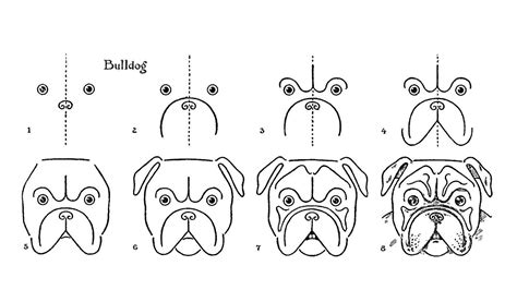 vintage kids printable draw  bulldog  graphics fairy