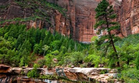 2 injured in zion national park lightning strike
