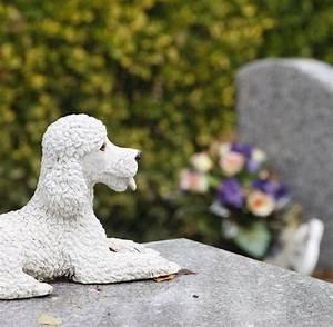 Tiere Im Garten Begraben : friedhof der tiere die gro e tierliebe die bis ins grab ~ Lizthompson.info Haus und Dekorationen