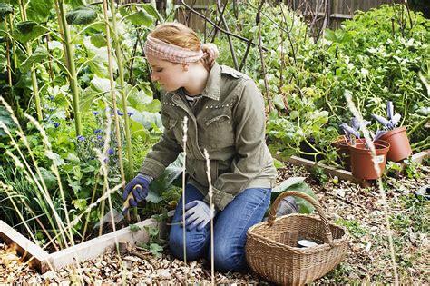 How To Start An Organic Vegetable Garden In Your Backyard by How To Start An Organic Vegetable Garden
