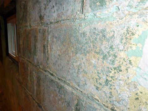 painting    encapsulate  basement wall