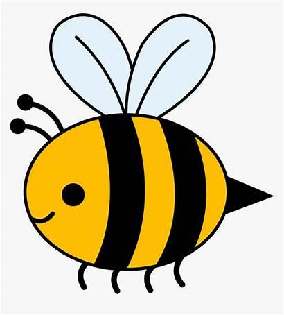 Bee Bumble Cartoon Clipart Bees Clip Transparent