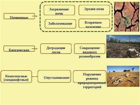 Киотский протокол и механизмы его реализации энергосовет.ru