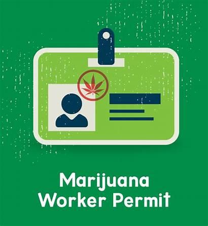 Marijuana Oregon Worker Permit Sheet Cannabis Cheat