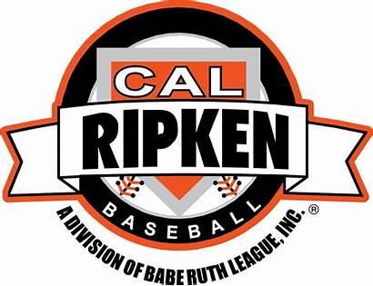 Cal Ripken Baseball League Youth Tournaments Allen