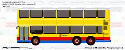 Transpng Bus Views Citybus