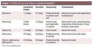 Gastroenteritis – cultua.info