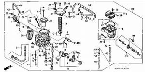 I Need A Diagram Of A Fuel System For Honda Trx400fa Four