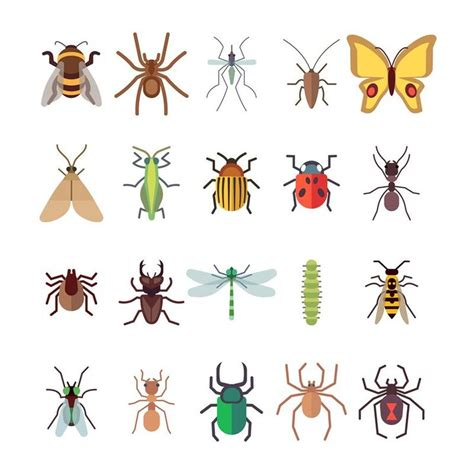 flat insects icons set butterfly dragonfly spiders ant