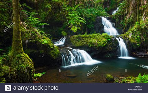 onomea falls stock photos onomea falls stock images alamy