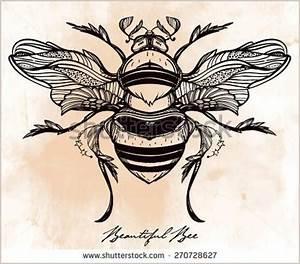 Beautiful hand drawn Honey Bee beetle Vintage style tattoo ...