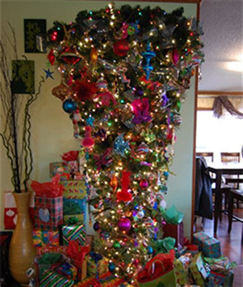 bottoms upside  christmas tree treetopia