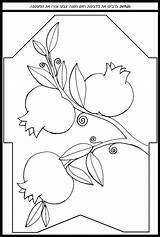 Coloring Pages Pomegranate Jewish Rosh Hashanah Hebrew Crafts Yom Kippur Pomegranates Rimonim Adult Drawings Patterns Featuring Sheets ד�ש ציור של sketch template