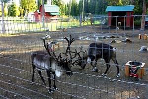 North, Pole, Alaska