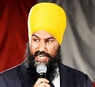 Image result for New NDP leader