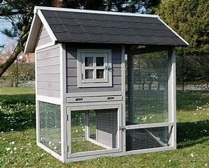 Grande Cage Pour Chien : grande cage furet chinchilla rat 39 39 house animals 39 39 animaloo ~ Dode.kayakingforconservation.com Idées de Décoration
