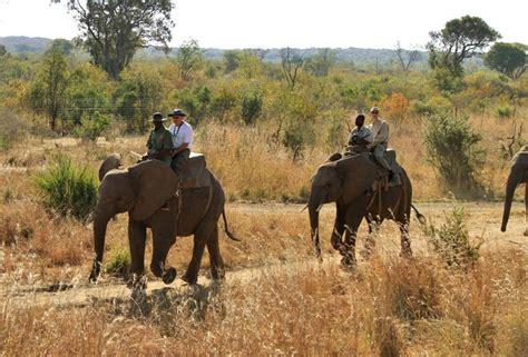 get free wildlife encounter plus unlimtited batoka gorge