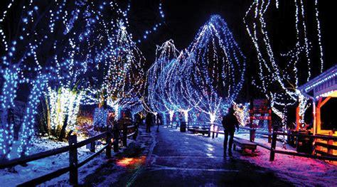 christmas light tour san diego limobuses