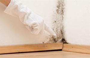 combattre humidit maison combattre l humidite u2013 le With comment combattre l humidite dans un appartement