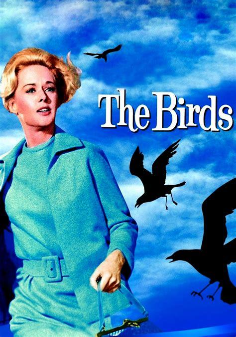the birds movie fanart fanart tv